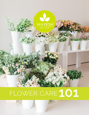 Flower-Care-Guide-Cover-01