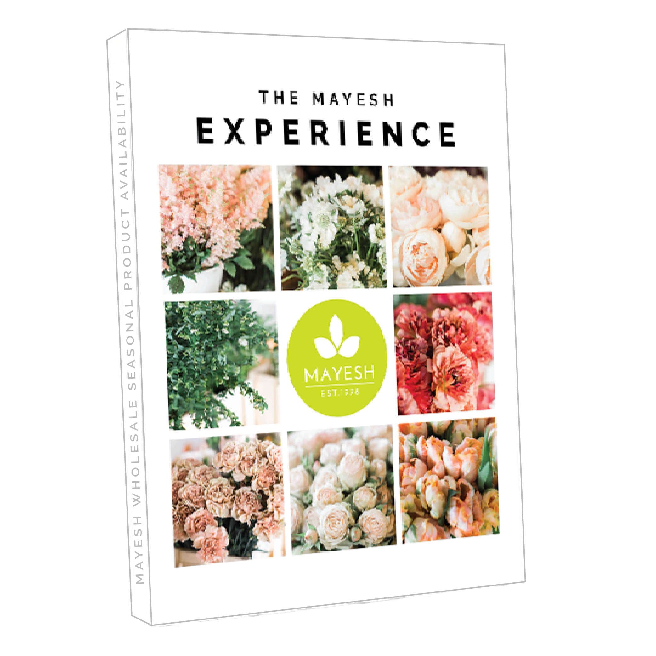 MayeshExperience_3D_Cover-01.png